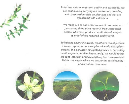 copywriting for a brochure about essential extracts from plants